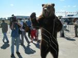 The Russian exclusive for foreigners - a bear